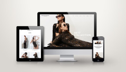 Web Design and Online Shop