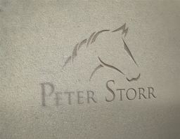 Peterstorr logo design