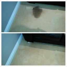 carpet cleaning sunderland