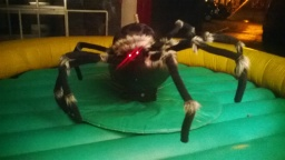 Rodeo Spider