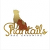 ShanTails