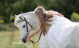 Emma Lowe Horse Photography Rugby Warwickshire