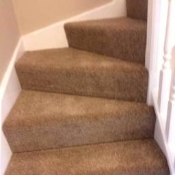 Cream Beige Carpets