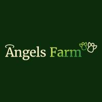 Angels Farm Apartments