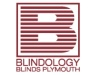Blindology Blinds Plymouth