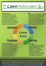 Four Season Lawn Care & Gardening