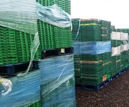 Hard plastic recycling - Eco Recycling Ltd