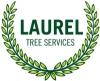 Laurel Tree Services