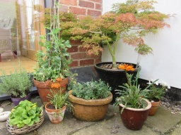 We create pretty areas using pots too