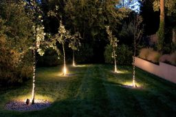 Garden design in Crystal Palace, south London