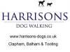 Harrisons Dogs