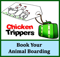 chicken boarding, animal boarding, pet boarding