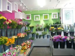 Rays Florist Flower Shop