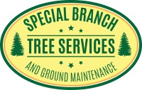 Special Branch Tree Services and Ground Maintenance