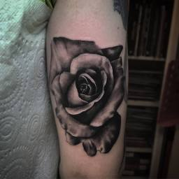 rose tattoo  London Blue Lady Tattoo