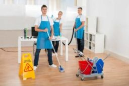 Daisy Property Maintenance LTD-Cleaning Services-C
