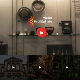 Pt Business Videos Belfast