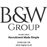 Black and White Group Ltd