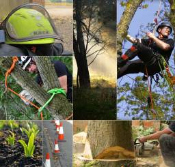 Tree Surgeon & Arborist Equipment