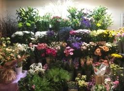 Gorgeous Flowers at Flower Design, Ripon. North Yo