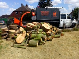 We always have logs for sale