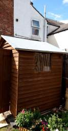 Shed roof renovation