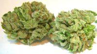 order marijuana online