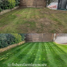 Completed Lawn Renovation