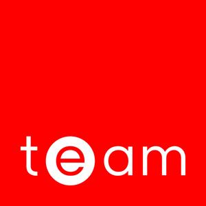 TEAM (Energy Auditing Agency Ltd.)