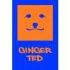 Ginger Ted Ltd