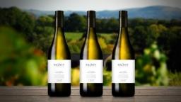 The Bolney Wine Estate branding