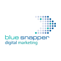 Blue Snapper Digital Marketing