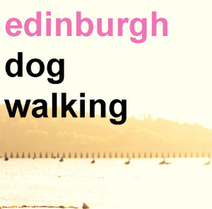 Edinburgh Dog Walking Services