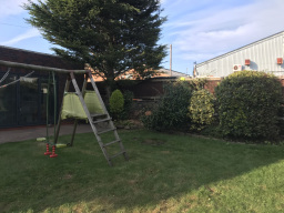 Tree Surgeon Wirral, Tree Surgeon Wallasey