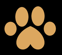 Fawn Dog 1-2-1 Dog Training