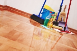 Cleaningproducts Woodenfloor Domesticclean