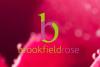 Brookfield Rose