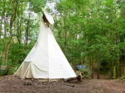 Robin, our new tipi.