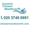 Domestic Cleaner Wandsworth