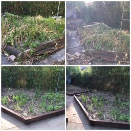 Raised beds made from reclaimed pallet wood