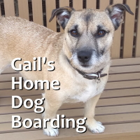 Gail's Home Dog Boarding