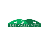 Dee Valley Vets