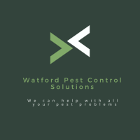 Watford Pest Control Solutions