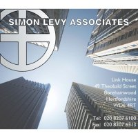 Simon Levy Associates