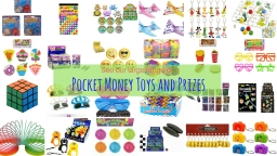 Wholesale pokcet money toys