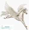 Pegasus Courier Solutions Ltd