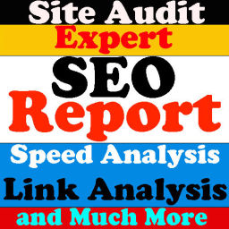 a complete SEO report for your website