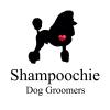Shampoochie Dog Groomers Stockport