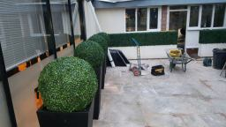 artificial topiary in planter