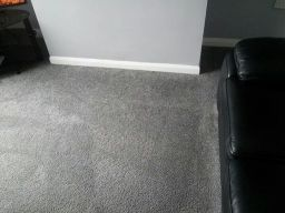 carpet stain removal after